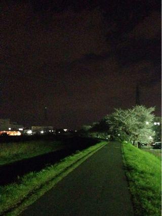 夜桜ランニング♪ ②_b0203925_21342941.jpg