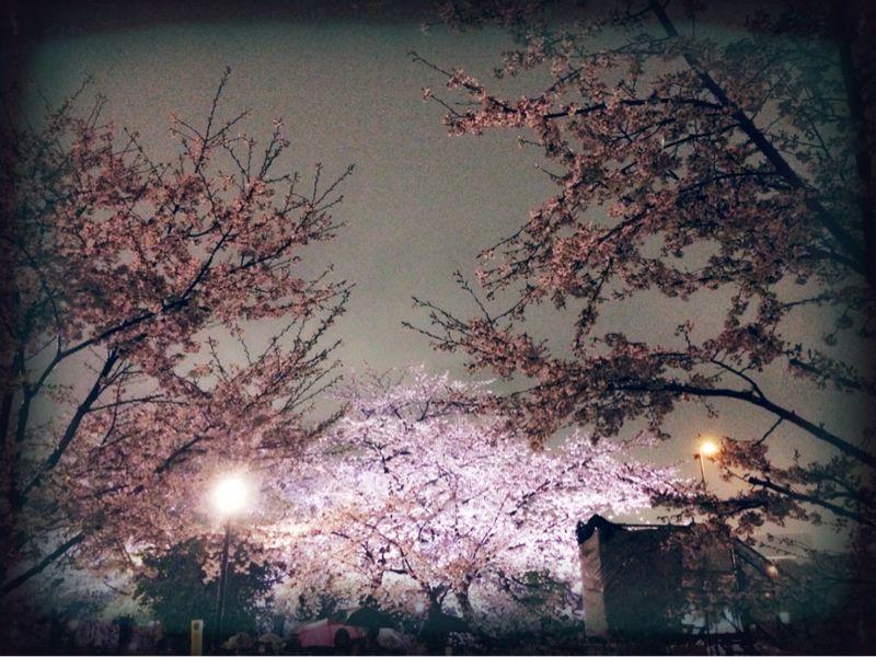 大満足の東京お花見! & 白金ジャンボ!_c0151965_13503260.jpg