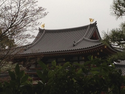 宇治川さくらまつり_e0247766_2012507.jpg
