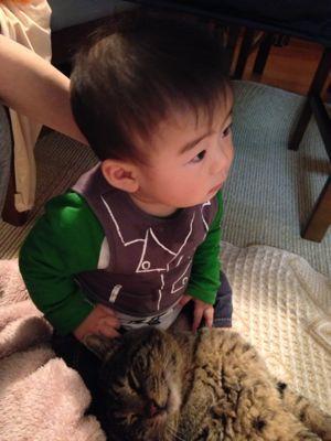 ネコ男子_a0188798_22161261.jpg