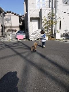 RIKURI幼稚園 - 土曜日編 -_a0284100_17584829.jpg