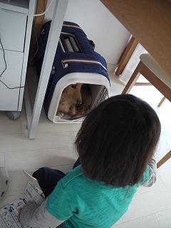 RIKURI幼稚園 - 土曜日編 -_a0284100_18144639.jpg
