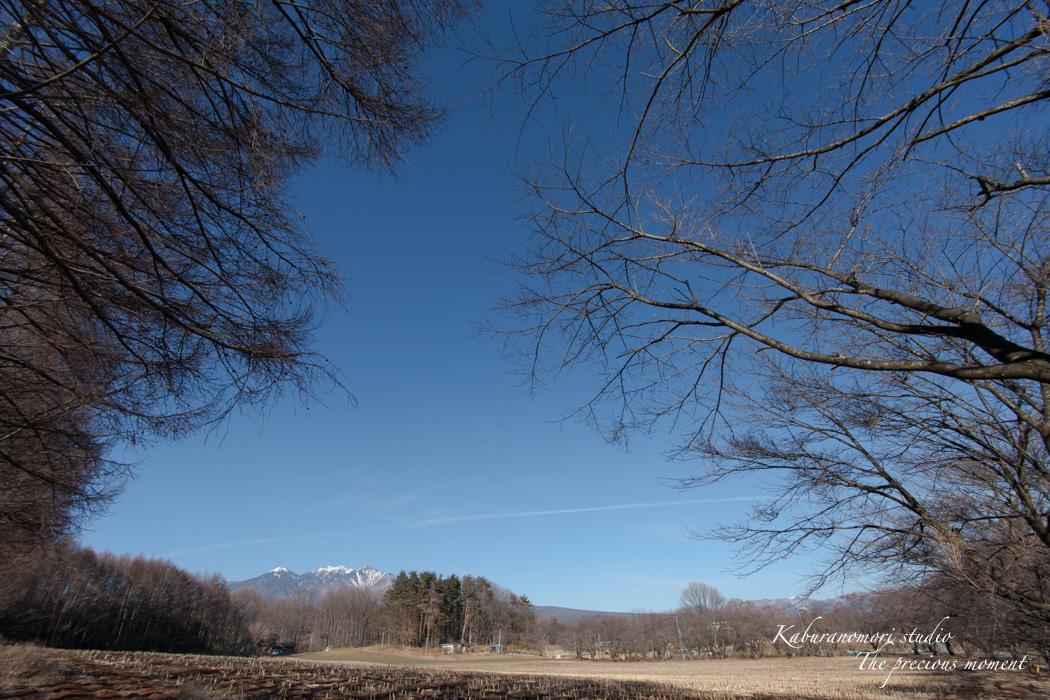 大雪前の写真  AT-X 17-35 F4 PRO FX編_c0137403_14445287.jpg