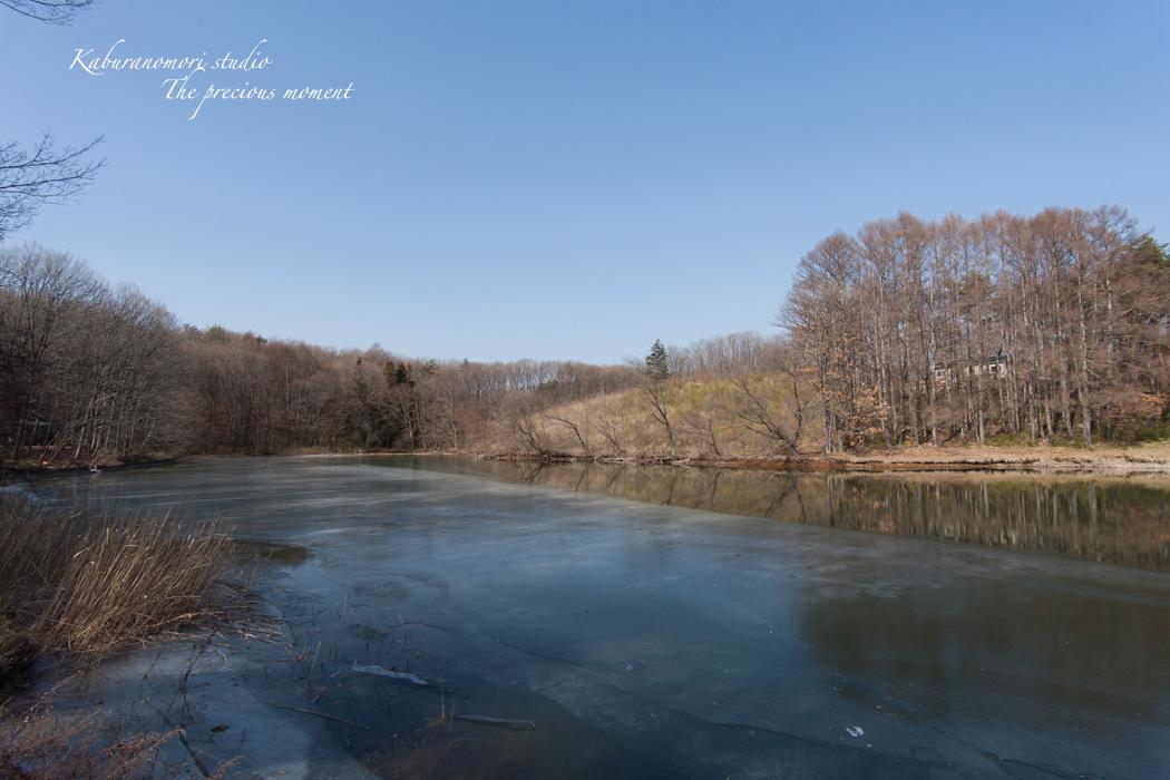 大雪前の写真  AT-X 17-35 F4 PRO FX編_c0137403_17295847.jpg