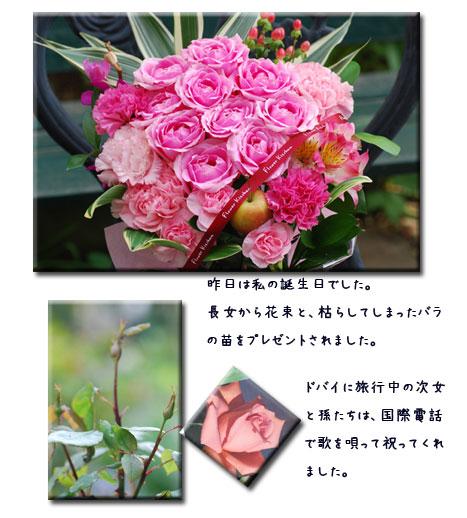 c0051105_17414199.jpg