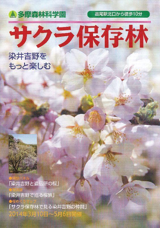 多摩森林科学園_a0138609_862099.jpg