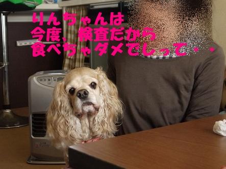 f0326925_21073858.jpg