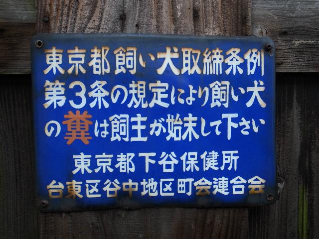 a0087341_161059.jpg