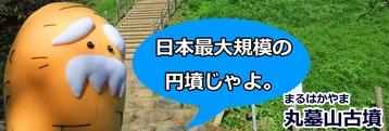 <2014年4月>埼玉探訪:「行田・さきたま古墳群」&「和同開珎」発祥地(秩父)_c0119160_11275140.jpg