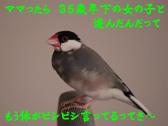 b0158061_2238579.jpg