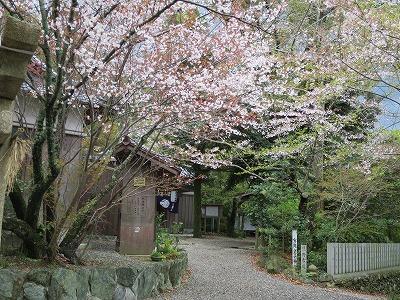 藤白神社で十期会_b0326483_19264498.jpg