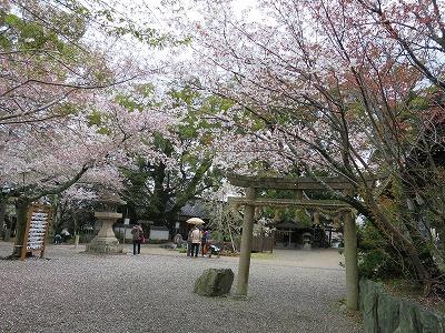 藤白神社で十期会_b0326483_19264667.jpg