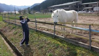 ゴージャスコームと、森の馬さん。_e0168583_9432680.jpg