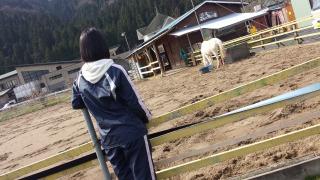 ゴージャスコームと、森の馬さん。_e0168583_943895.jpg