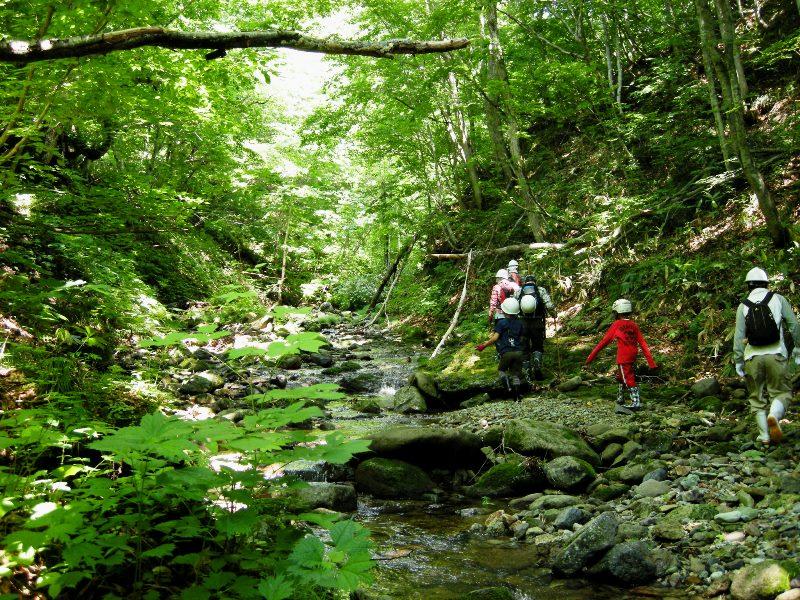 「きこりの森の会」ハイキング参加者募集_f0227395_1142763.jpg
