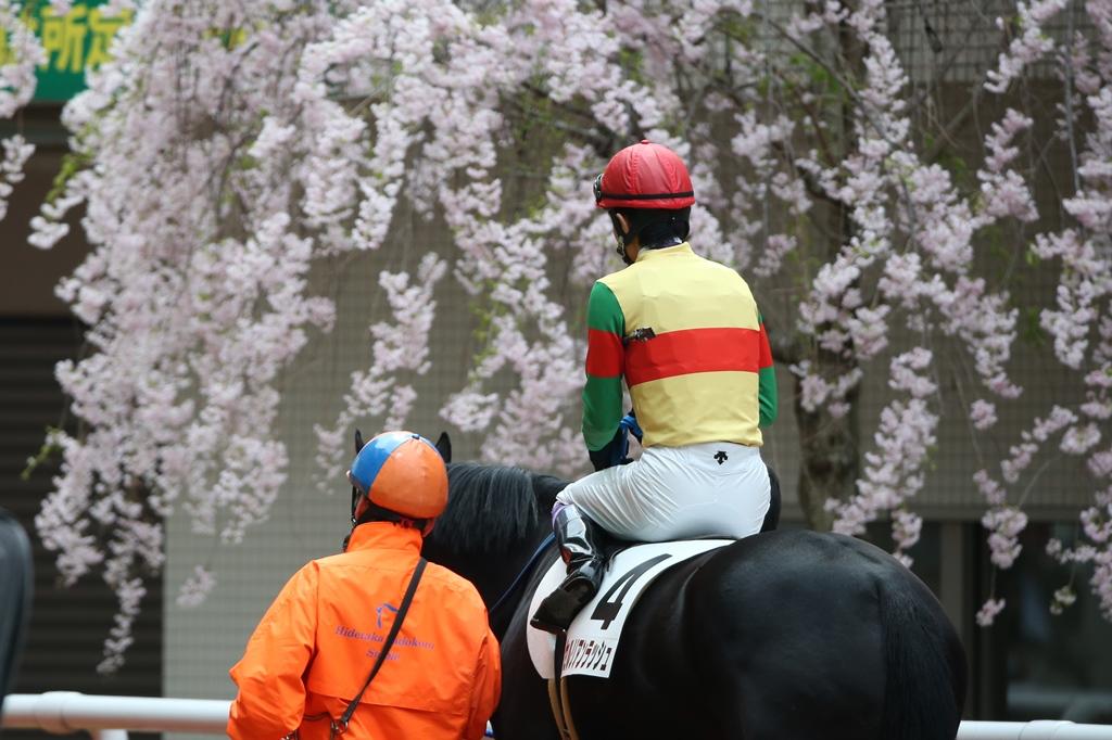 2014年4月6日 産経大阪杯(GⅡ)_f0204898_23485566.jpg