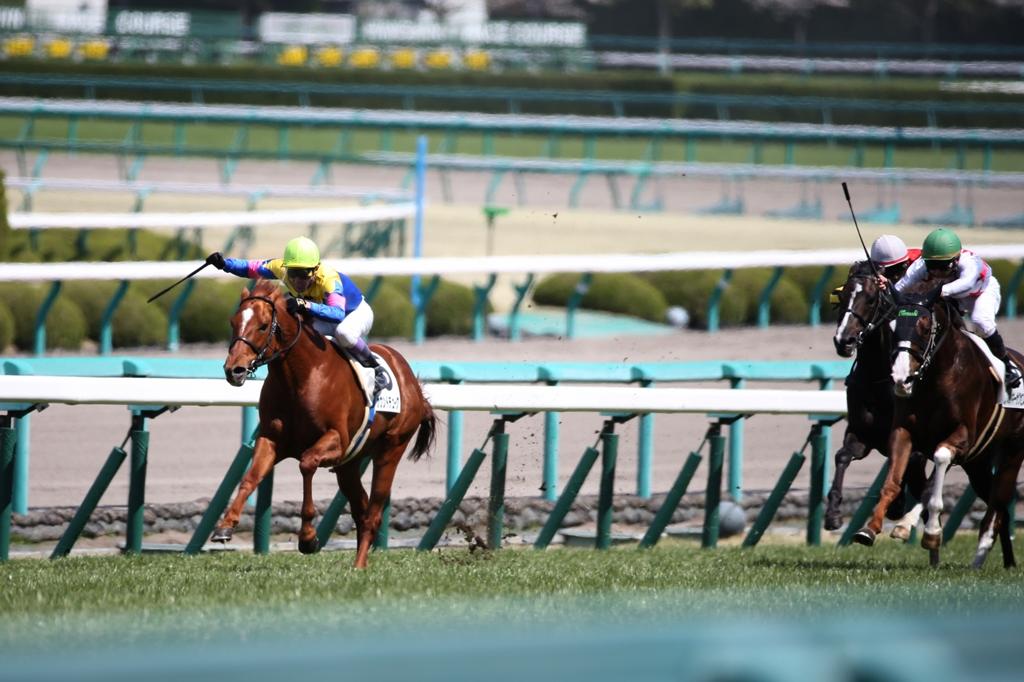 2014年4月6日 産経大阪杯(GⅡ)_f0204898_23511235.jpg