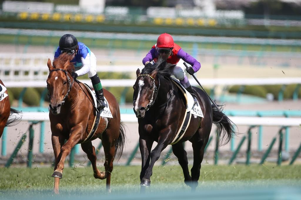 2014年4月6日 産経大阪杯(GⅡ)_f0204898_23532837.jpg