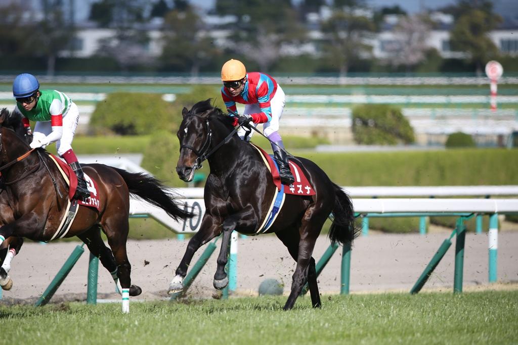 2014年4月6日 産経大阪杯(GⅡ)_f0204898_23542782.jpg