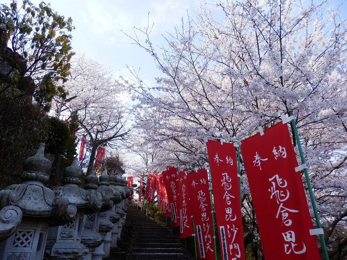 桜が咲いた・里歩き_f0219710_12414936.jpg