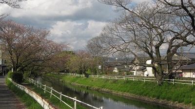 神野(こうの)公園  ~佐賀市~_b0228113_13480129.jpg