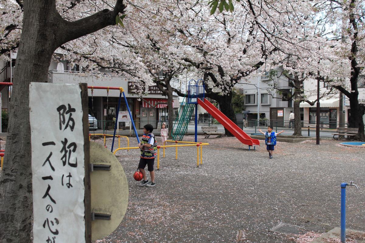 登戸  岸辺の春_b0061717_0233839.jpg