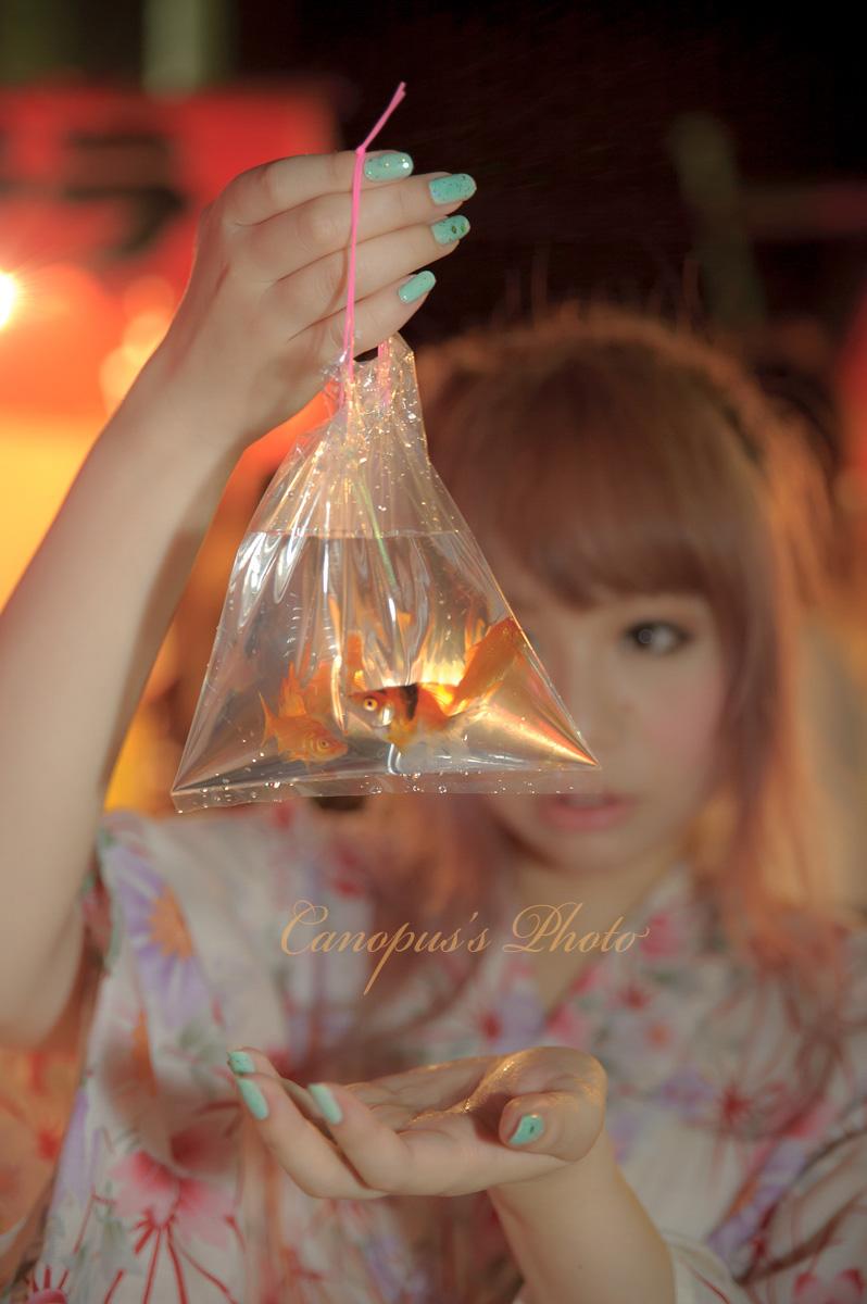 金魚すくい_e0196140_17121355.jpg
