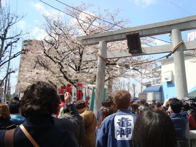 関東三大奇祭「かなまら祭り」へ行く。_f0232060_0253111.jpg