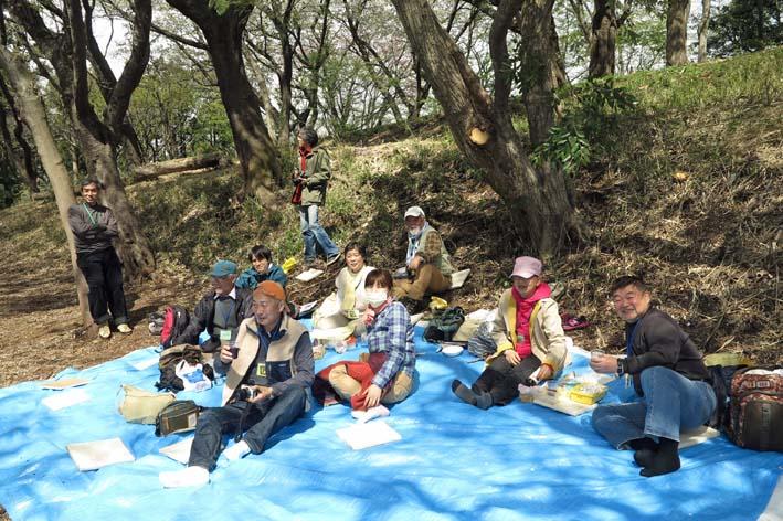北鎌倉の里山にはヤマザクラが似合う:北鎌倉ウォッチング_c0014967_2026320.jpg