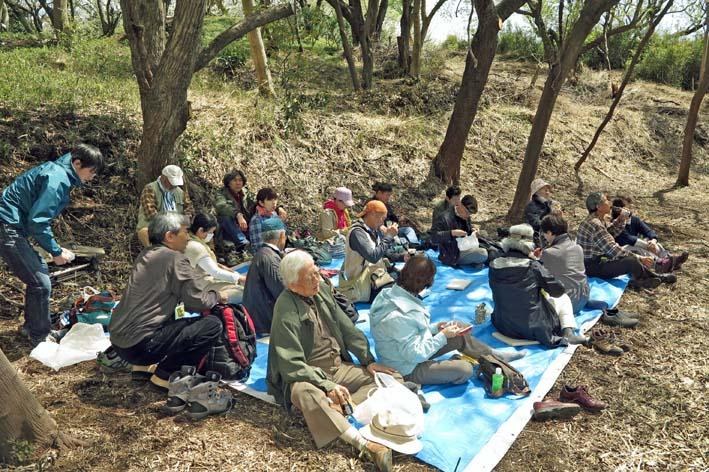 北鎌倉の里山にはヤマザクラが似合う:北鎌倉ウォッチング_c0014967_2031496.jpg
