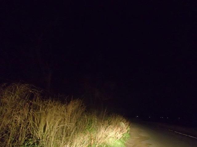 茨城県 到着    (眠い私と 釣りをする人 編 ①)_d0105967_11395299.jpg