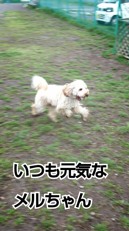 f0230380_014309.jpg