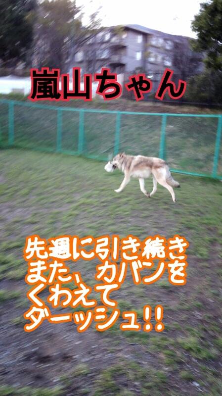 f0230380_0274394.jpg