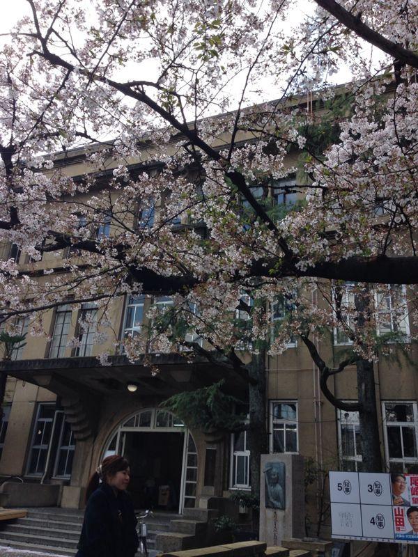 桜とギャラリー巡り_c0100195_1024467.jpg