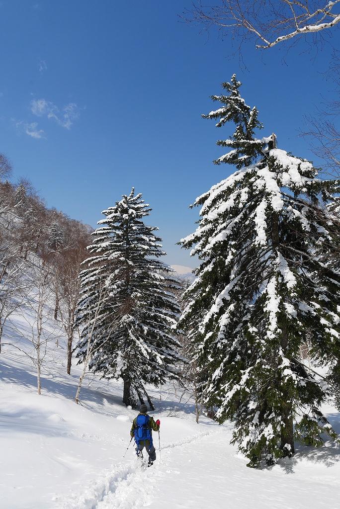 4月7日、札幌岳-速報版-_f0138096_2282073.jpg
