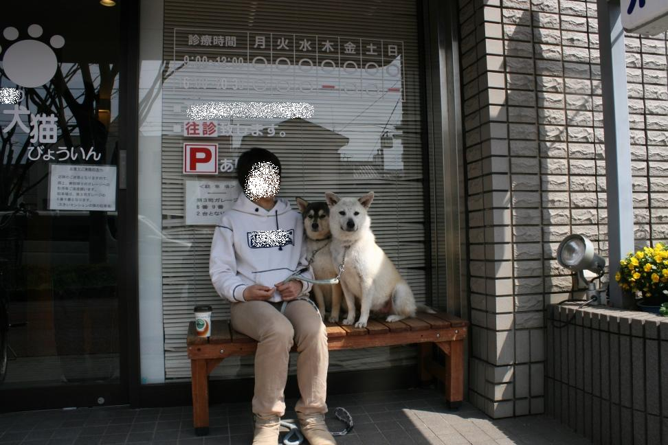 かるびちゃん&はらみちゃん_f0242002_19592422.jpg