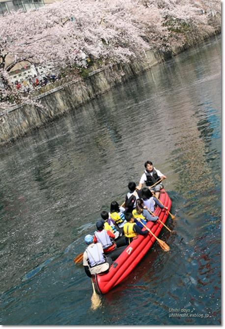 大岡川 桜散歩♪ と タカノフルーツパーラー_f0179404_21474475.jpg