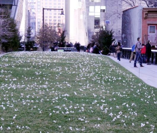 早春のニューヨーク、空中公園ハイラインの様子_b0007805_03397.jpg