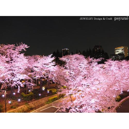 夜桜散歩_e0131432_1543184.jpg