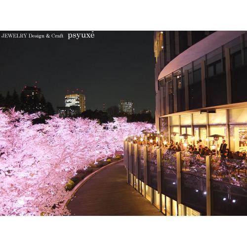 夜桜散歩_e0131432_1543255.jpg