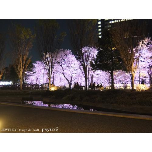 夜桜散歩_e0131432_15433321.jpg