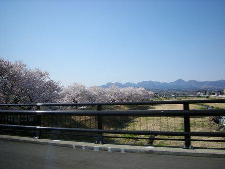 麦畑を突っ走り春本番の高崎へ!_b0206037_18153110.jpg
