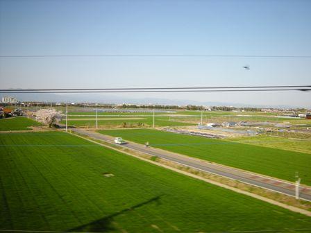 麦畑を突っ走り春本番の高崎へ!_b0206037_18224933.jpg