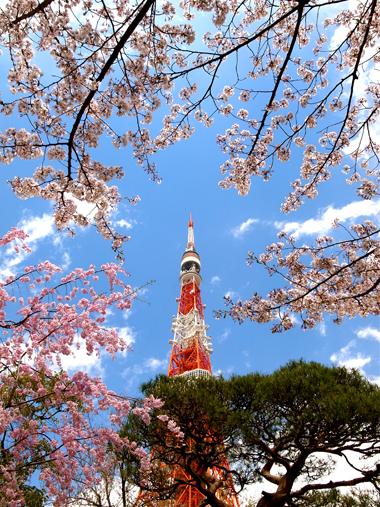 時には花咲く道をゆく_e0071652_6294246.jpg