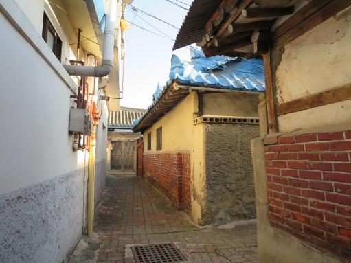 韓国料理と桜_b0100062_22152739.jpg