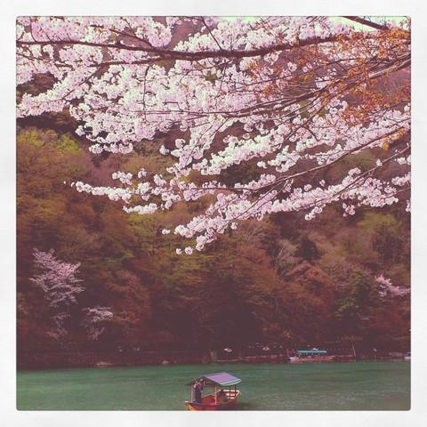 春_a0235880_7522224.jpg