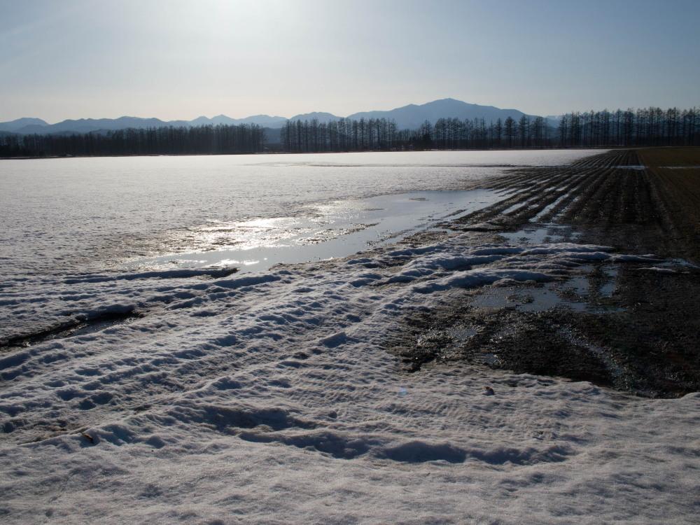 雪どけ進む・・中札内村の農村風景_f0276498_18202110.jpg