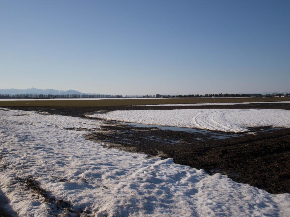 雪どけ進む・・中札内村の農村風景_f0276498_18203870.jpg