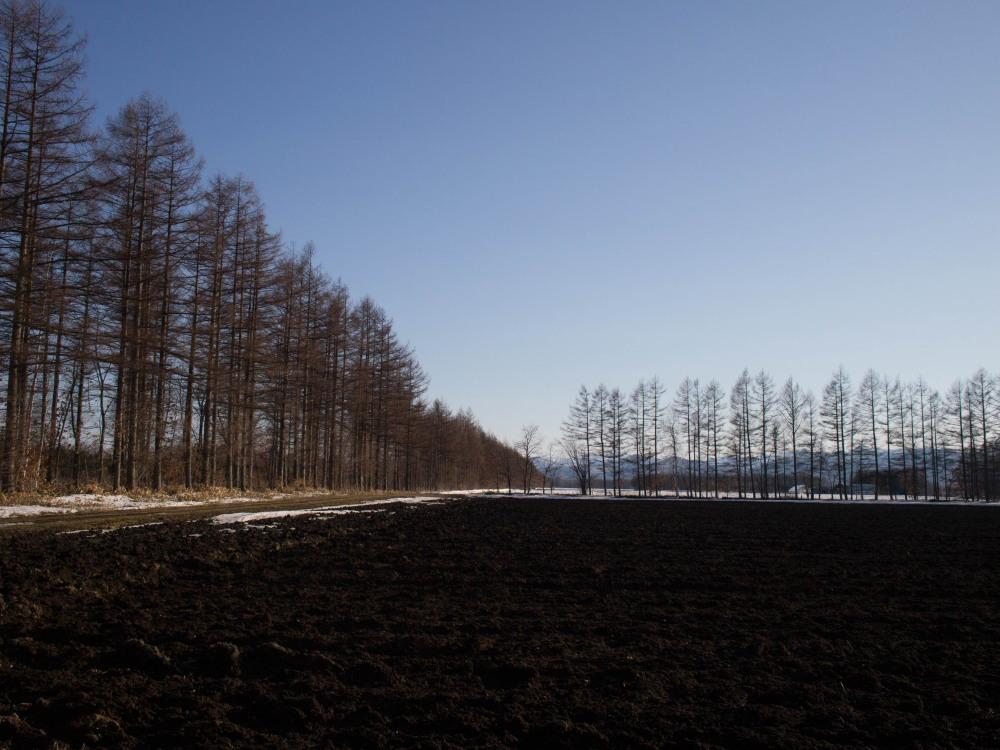 雪どけ進む・・中札内村の農村風景_f0276498_18210244.jpg