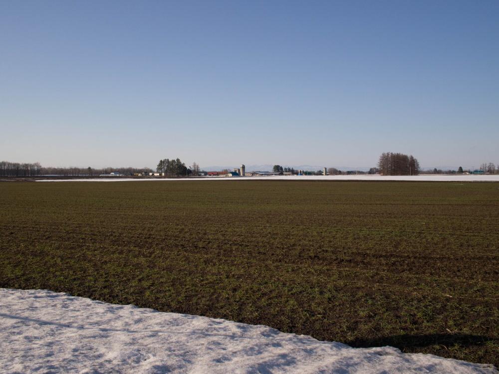 雪どけ進む・・中札内村の農村風景_f0276498_18211510.jpg